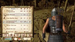 Hade Oblivion klarat sig helt utan berättelse? Om de bara hade slängt ut oss i vildmarken?